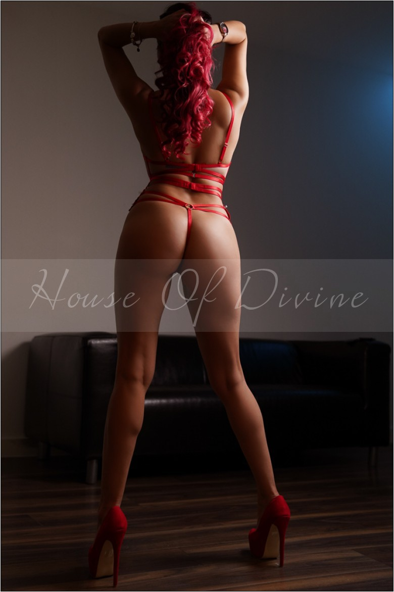 Bunny at House Of Divine Escorts
